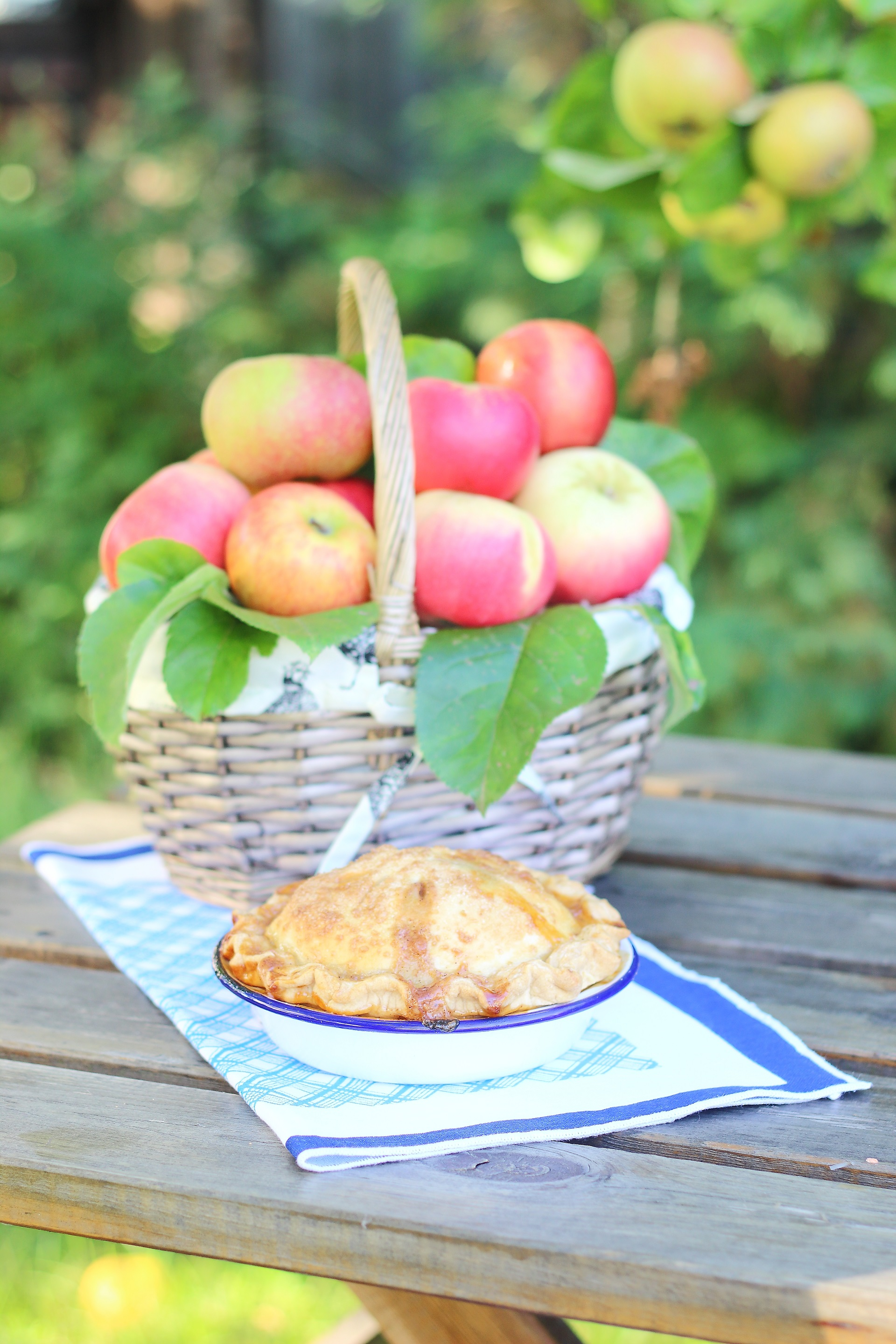 Apple pie in giardino