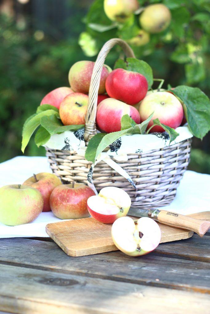 Cesto di mele con tagliere in giardino